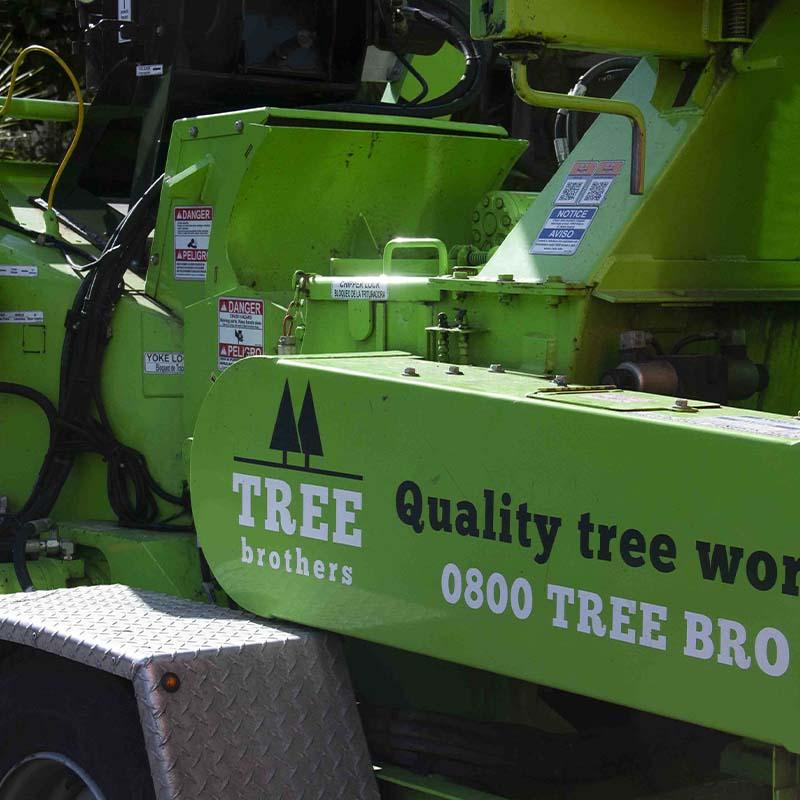 Tree Mulching Service